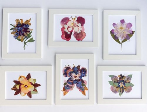Pressed Flower Art FAQ