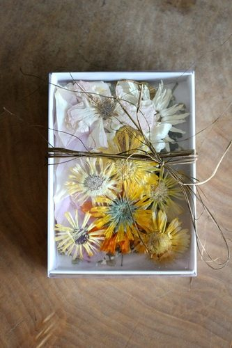 Edible Pressed Flower Cake Decoration or Garnish