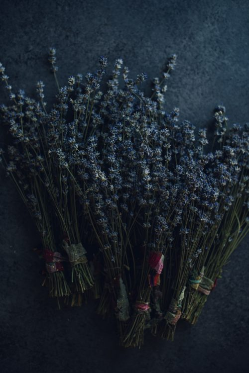 Local Dried Lavender Flower Bundles