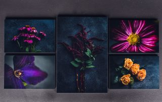 set of five vibrant floral prints in a collage