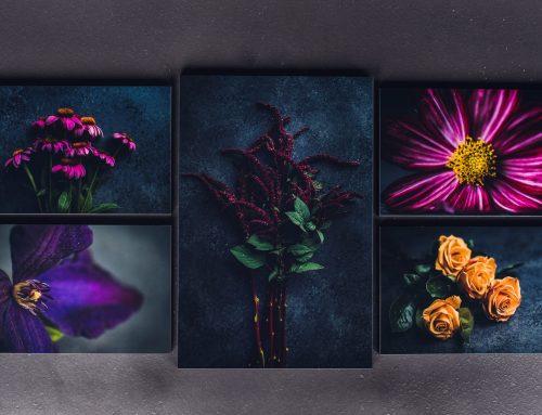 Introducing Floral Art Prints