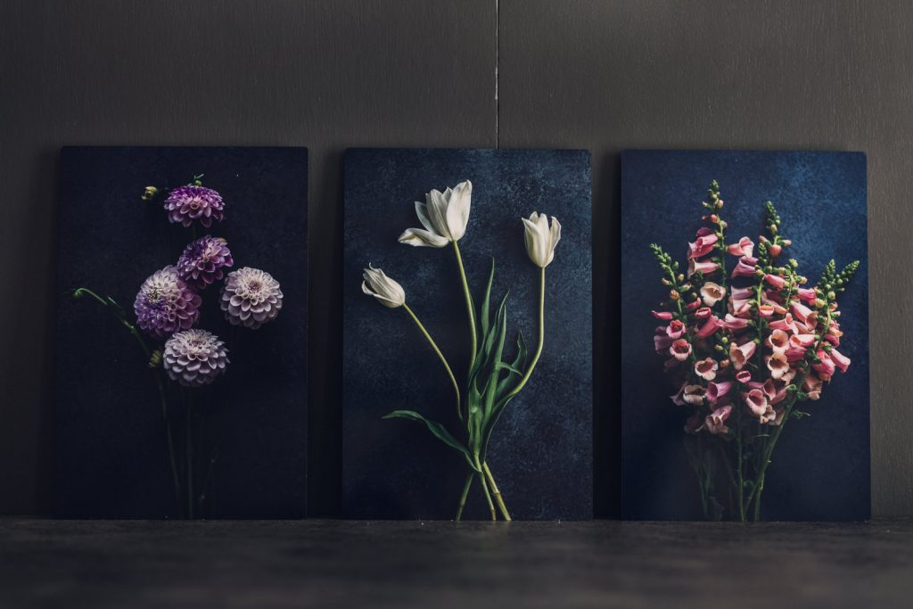 set of three vivid metal prints showing a group of purple dahlias, white french tulips and pink snapdragons