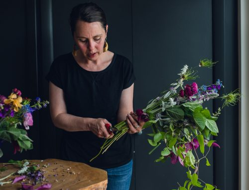 Floral Mentorships and Branding Sessions
