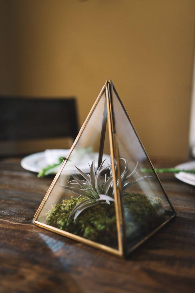 glass pyramid terrarium centerpiece with succulent